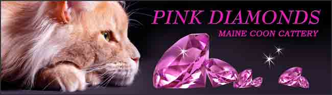 Pink Diamonds - Homepage